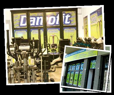 Damofit (Deportes Y Fitness):        Quienes Somos