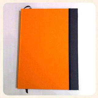 Doris Cuadernos (Art. De Librería / Oficina):        Cuaderno Grande Liso · Bicolor
