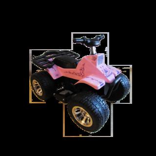 Mimpi Jugueteria (Jugueterias):        Miniquad Super Girly