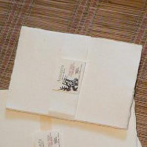 Molino Aguada (Otros Productos):        Pack Papeles Acuarela A5
