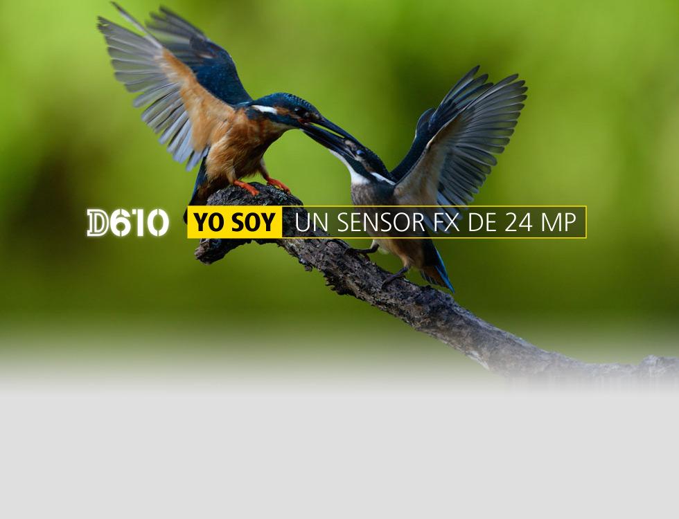 Nikon Argentina (Electro Y Tecnología):        20140520 054401
