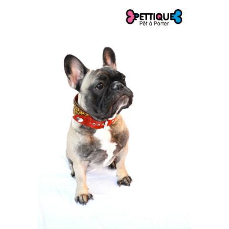 """Pettique (Mascotas):        Collar """"Track"""" Con Rojo"""