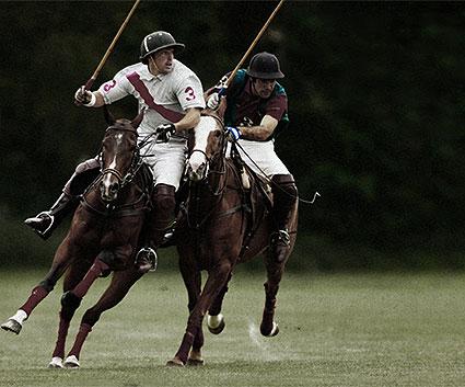 Polo Club (Indumentaria):
